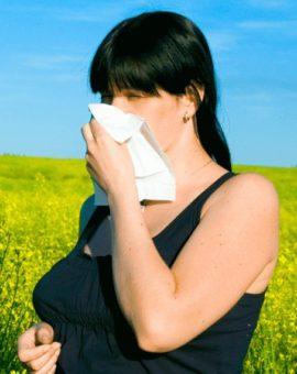 Allergy Labels - SHOUTOUT